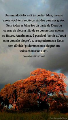 Frases de Jeová Jehovah's Witnesses, My Life, Prints, Great Words, Powerful Quotes, Scriptures, Jehovah Witness