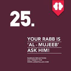 Ya Rabb Al Mujeeb!