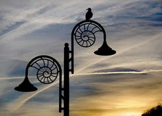 Ammonite Lamp Post at Dusk...Gorgeous..it reminds me of a french horn..