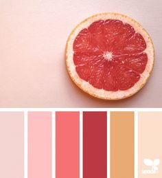Color Slice | design seeds | Bloglovin'