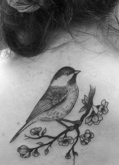 A chickadee on a cherry blossom branch. Positively beautiful. Carissa Marchand Sin on Skin Halifax, NS, Canada
