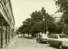 Parliament street, 1962. | When cars were still allowed to drive past the Houses of Parliament.