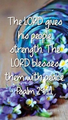 Psalm 29:11 7/1/14 The Lord will give strength unto his people; the Lord will bless his people with peace. Dear Heavenly, I thank You for strength when I'm weak, and the peace of God which passes all understanding.......~Amen~ http://anitahewitt.blogspot.com/2014/07/psalm-2911-food-for-soul-evan-anita.html Thank You For Your Support: http://www.bryanthewitt.com/donate-1/