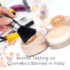 Animal Testing on Cosmetics Banned in India - Find out what this ban does (and does not) cover on Logical Harmony! #vegan #crueltyfree #animaltesting