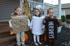 S'mores Costume.  Triplet Halloween Costume