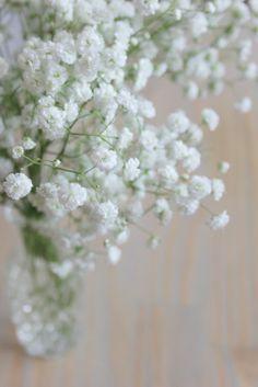 La mariee aux pieds nus – Gypsophile fleurs disponible toute l'année
