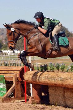 Equestrian: Cross Country