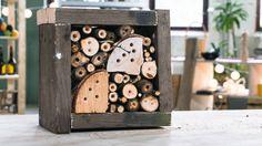 BÆREKRAFTIG BRUKERHÅNDBOK: Massedød blant bier og humler kan bli et stort problem for produksjon av mat i fremtiden. Ditt bidrag kan være å bygge et 5-stjerners hotel.