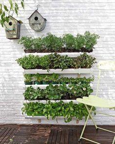Para fazer, decorar, reciclar e customizar Faça uma horta vertical