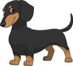 dachshund: illustration funny dog thoroughbred on a white background Dachshund Funny, Arte Dachshund, Dachshund Love, Funny Dogs, Daschund, Dog Vector, Vector Art, Cartoon Sketches, Dog Illustration