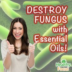 A 2006 studies showed some Antifungal Essential Oils more effective than the prescription drug Hexaconazole. Yeasts are fungi-these oils can kill Candida.