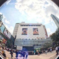 #Shibuya #渋谷 #시부야 | Use Instagram online! Websta is the Best Instagram Web Viewer!