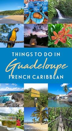 Discover the best things to do in Guadeloupe in the French Caribbean – with highlights from Grand-Terre and Basse-Terre including beautiful beaches, waterfalls, rum distilleries and jungle hikes. Pointe À Pitre, Stuff To Do, Things To Do, Caribbean Culture, Westerns, Travel Destinations, Travel Tips, Travel Ideas, Travel Abroad