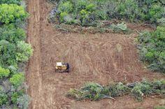 Deforestación en Chaco-Argentina