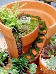 Pot met plantjie en trappies gemaak van die pot ;)