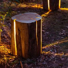 """Cracked Log Lamp"": Designerlampe aus Holzstamm #Cracked Log Lamp #Duncan Meerding #Holzstamm"