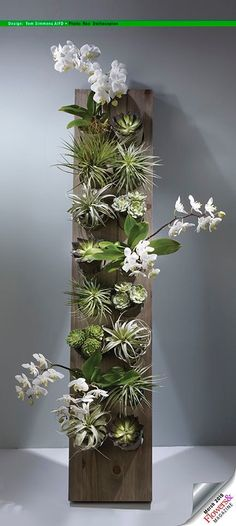 Tom Simmons AIFD This vertical garden is a fabulous gift for mom with dendrobium orchid plants, succulents and succulents and tillandsias. Design by Tom Simmons AIFD. Photography by Ron Derhacopian. Succulents Garden, Garden Plants, House Plants, Planting Flowers, Orchid Plants, Air Plants, Indoor Plants, Hanging Plants, Garden Art
