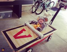 Oh how I wish I could borrow a small child for this!!! (Big opening in painted plywood, tube, and a wagon!)