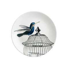 Hummingbird Side Plate by Natural History