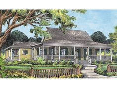 Campville Country Acadian Home Country Acadian Home Design With Wrap-Around Porch from houseplansandmore.com