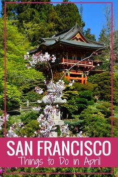 Find the best events and activities this April in San Francisco including festivals, where to see the cherry blossoms, and so much more! California With Kids, Visit California, California Travel, Southern California, Vacation Places In Usa, Cruise Destinations, San Francisco Travel, Things To Do, Free Things
