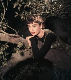 "audrey hepburn bangs-from the movie ""Sabrina"""