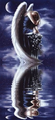 Animated Angels, Reflections, Water Reflections,  Angels, Reflection, Keefers photo Keefers_AnimatedAngels2009.gif