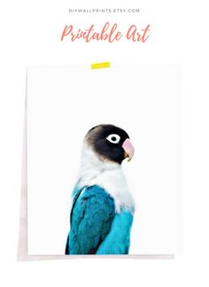New must-haves for your walls! Download Today at diywallprints.etsy.com Walls, Nursery, Birds, Prints, House, Animals, Etsy, Animales, Day Care