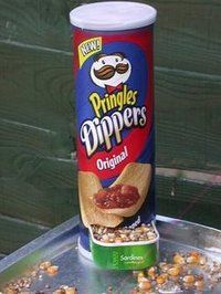 Google Image Result for http://www.hippyshopper.com/pringles%2520bird%2520feeder-thumb.jpg