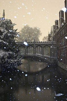 Bridge of Sighs in St. John's College During a Snowstorm at Cambridge University in England Oh The Places You'll Go, Places To Travel, Places To Visit, Beautiful World, Beautiful Places, Beautiful Pictures, Between Two Worlds, Around The Worlds, Cambridge England