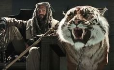 'The Walking Dead' Just Took a Major Step for Animal Rights - This very real-looking tiger is CGI and animatronics.