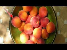 Η πιο δυνατή αντικαρκινική ουσία της γης: Β17 - Δείτε που θα την βρείτε.. - YouTube Cancer, Health Fitness, Peach, Fruit, Youtube, Recipes, Food, Peaches, The Fruit