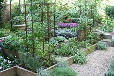 Love this modern take on a kitchen garden.