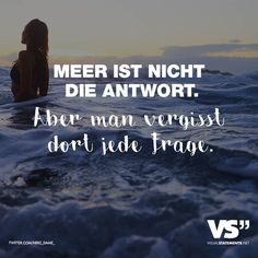 Aber man vergisst dort jede Frage Sea is not the answer. But you forget every question there. Best Travel Quotes, Best Quotes, Love Quotes, Life Slogans, Thanks Words, Motivational Quotes, Inspirational Quotes, German Quotes, German Words
