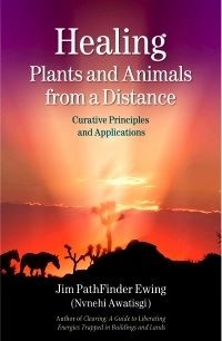 This is my third book from Findhorn Press, Healing Plants And Animals From a Distance, published in 2007. It had a resurgence of sales during the Gulf Oil Spill, as people were sending prayers for the region and marine life. It focuses on distance healing and prayer techniques in ecospirituality along the lines of the secret life of plants (and animals!). You can read more @FindhornPress or our webpage: www.blueskywaters.com