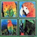 Artsonia Art Exhibit :: Four Views of an Animal