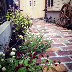 庭 レンガのインテリア実例 | 10ページ目 | RoomClip (ルームクリップ)