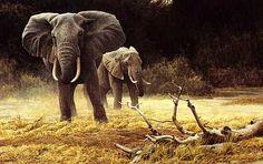 Elephant Cow and Calf - Robert Bateman
