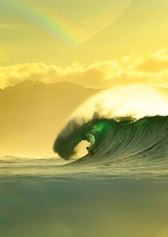 highenoughtoseethesea:  Corey Wilson, doing what he does on the North Shore ph Duncan Macfarlane