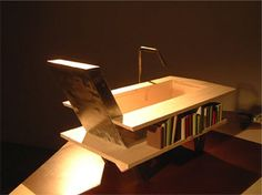The Library Bath — A hybrid inbetween a bathtub, bookshelf and an armchair.