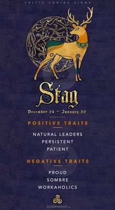 If You've Exhausted Everything From Tarot To Zodiac, Try Celtic Signs To Know More About Yourself Celtic Zodiac Signs, Celtic Signs, Celtic Astrology, Celtic Art, Astrology Zodiac, Spirit Animal Totem, Animal Spirit Guides, Animal Totems, Stag Tattoo