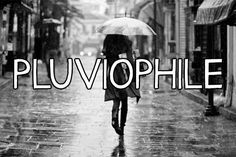 Pluviophile: A lover of rain, someone who finds joy and peace of mind during rainy days.