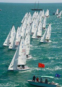 J/70 fleet.  Murray Yacht Sales is the Gulf Coast dealer for J/Boats