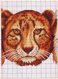 TIGRE-LEON-3.jpg (750×1024)