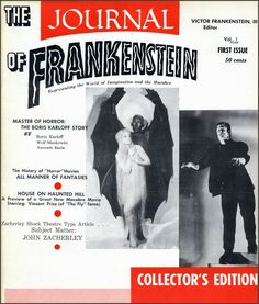 The Golden Age: Journal/ Castle of Frankenstein ~ 25 Issues ~ 1959-1975