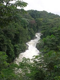 Kwafalls, Cross River National Park, Nigeria