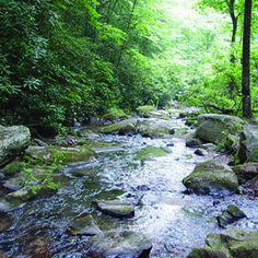 High Country Waterfalls and Swimming Holes along Blue Ridge Parkway 1972 Honey Moon