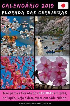Confira as datas que o sakura vai florescer em Tokyo, Kyoto, Osaka, Hiroshima e outras cidades japonesas com o calendário da floração das cerejeiras no Japão em 2019!  Aproveite e programe sua viagem para a primavera japonesa!   Vejas nossas outras dicas e roteiros com os melhores locais para ver o sakura!
