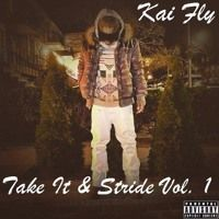Take It & Stride Vol. 1 by Nakai Fly on SoundCloud