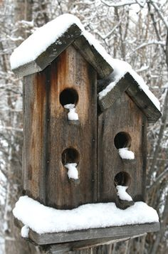 Bird Houses Lamoille NV by ThePhotoImpression on Etsy